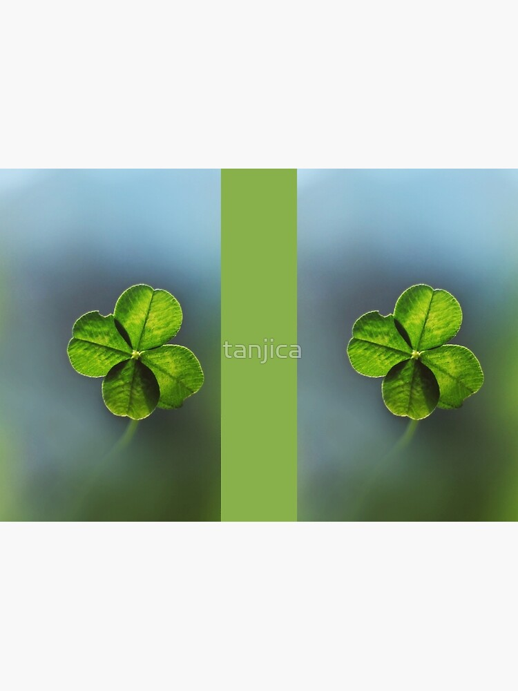Lucky Charm Four Leaf Clover. Irish Lucky Shamrock by tanjica