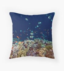 Reef edge Throw Pillow