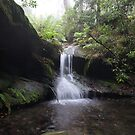 Upper cascades, Fairy Bower Falls, Bundanoon by orkology