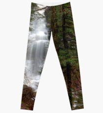 Ganoga Falls Roars in the Misty Glen Leggings
