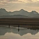Fishing by Milos Markovic