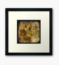 Cottontail TTV Framed Print