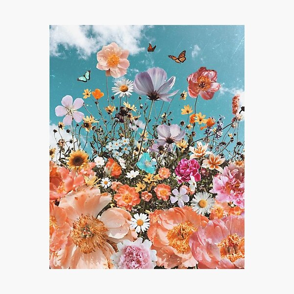 colorful flowers and butterflies Photographic Print