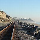 Riding the Rails along San Clemente, California by Joni  Rae
