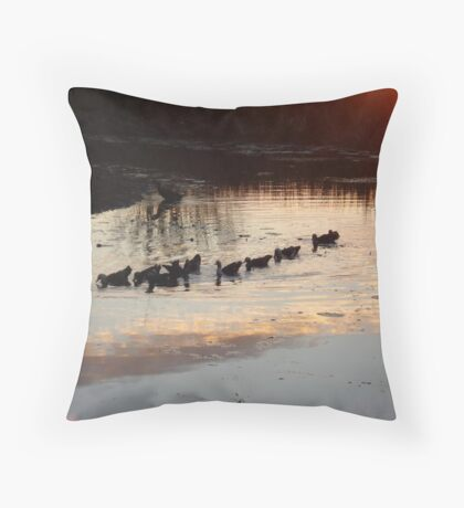 FOLLOW THE LEADER - MUSCOVY DUCKS AT SUNSET Throw Pillow