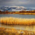 Frozen dam and Konyavska mountain by Ivo Velinov
