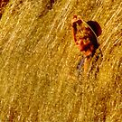 Girl In A Cornfield  by Eve Parry