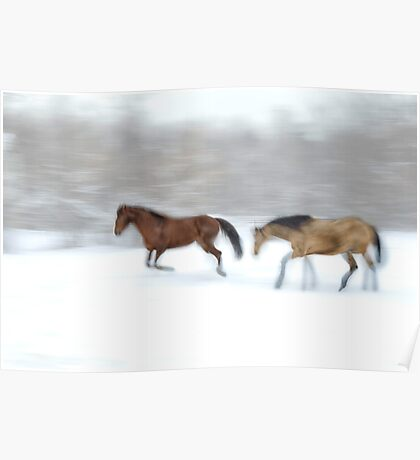 Horse Play Poster