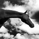 Horse (15-7) by Raymond Kerr