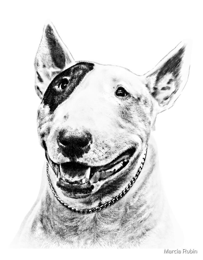 Comical Bull Terrier by Marcia Rubin