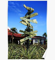 Dole Pineapple Plantation Poster