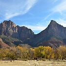 Zion by Julie Moore