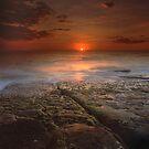 """""""The Darkest Days"""" ∞ Merimbula, NSW - Australia by Jason Asher"""
