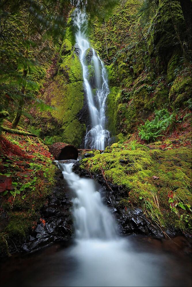 Nick Eaton Falls by Tula Top