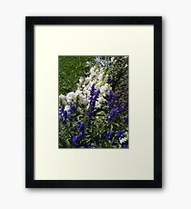 Domestic wilderness Framed Print