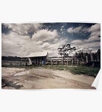 Maurice's Hut at Horse Paddock Bay Poster