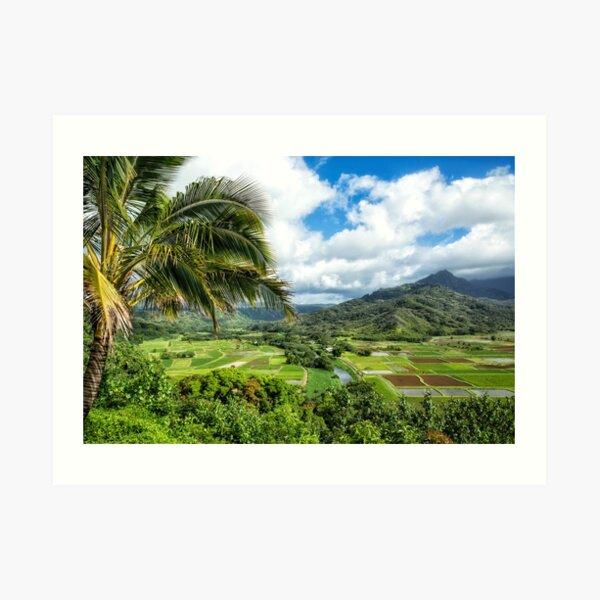Nature scenery in Hanalei, Kauai Art Print