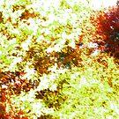 Foliage Pattern by Benedikt Amrhein