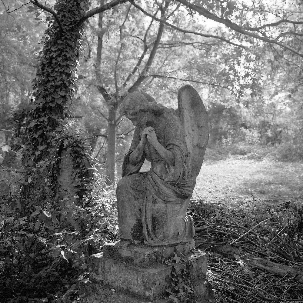 Angel, Nunhead by tubb