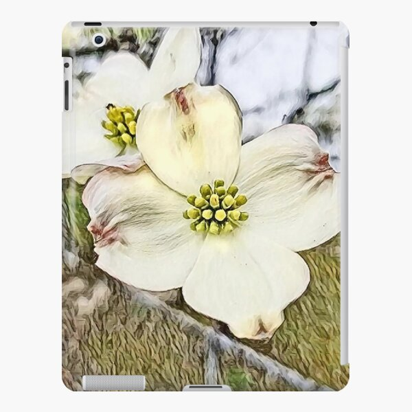 White Dogwood Blooms iPad Snap Case