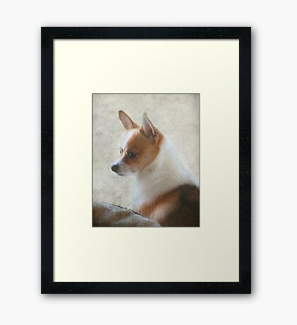 Sweet And Innocent Framed Print