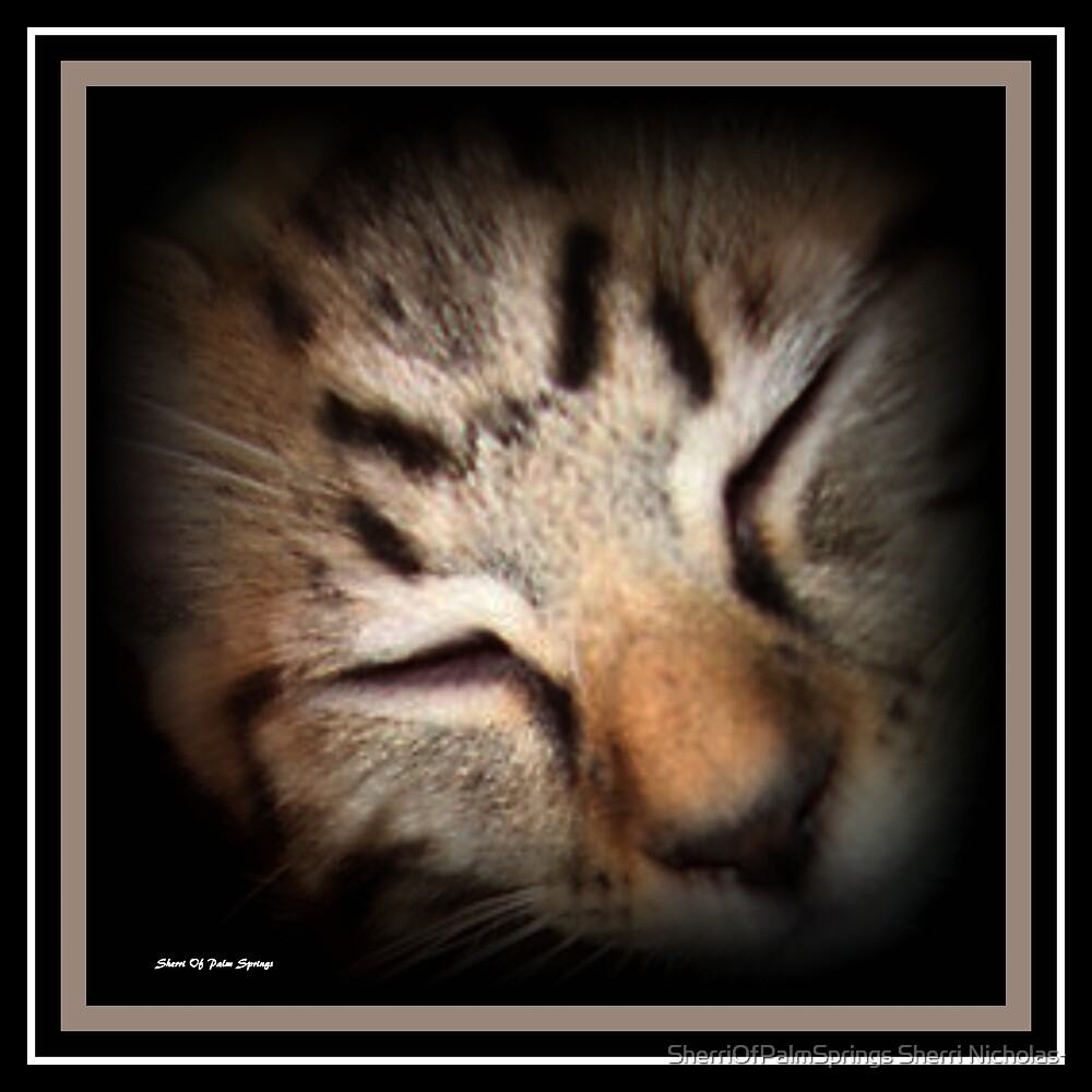 SWEEPY HEAD by SherriOfPalmSprings Sherri Nicholas-