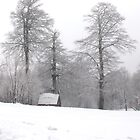 home snowy home by Mustafa UZEL