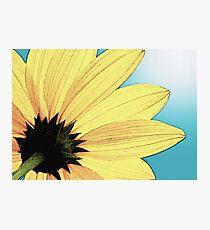 Yellow Wild Flower Photographic Print