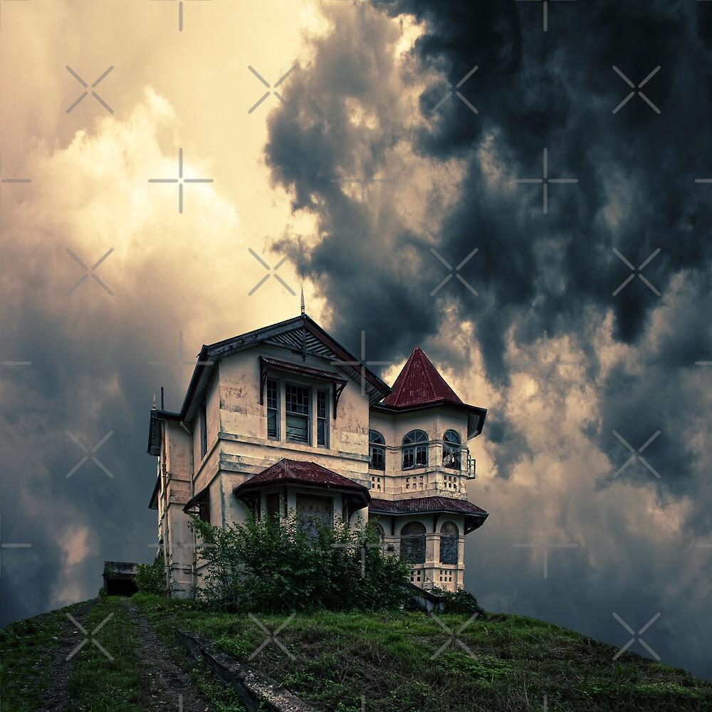Storm on the horizon by Mel Brackstone