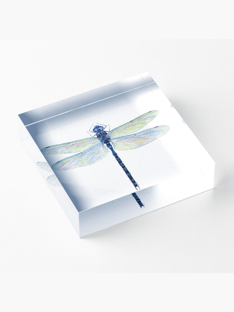 Alternate view of Spatterdock Dragonfly Acrylic Block