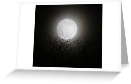1st Full Moon of The new Year~!!!!!! by Brenda Dahl