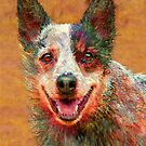 australian cattle dog by jashumbert