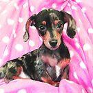 pink dachshund by jashumbert