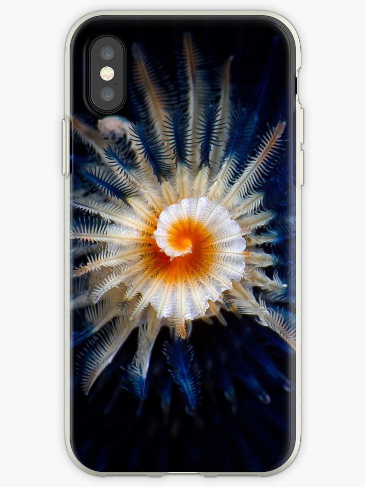 Underwater iPhone series - spiral by Carlos Villoch