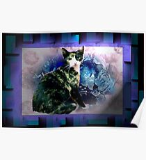 Tortoise shell cat by blue flowers Poster
