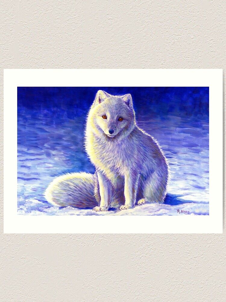 Alternate view of Peaceful Winter Arctic Fox Art Print