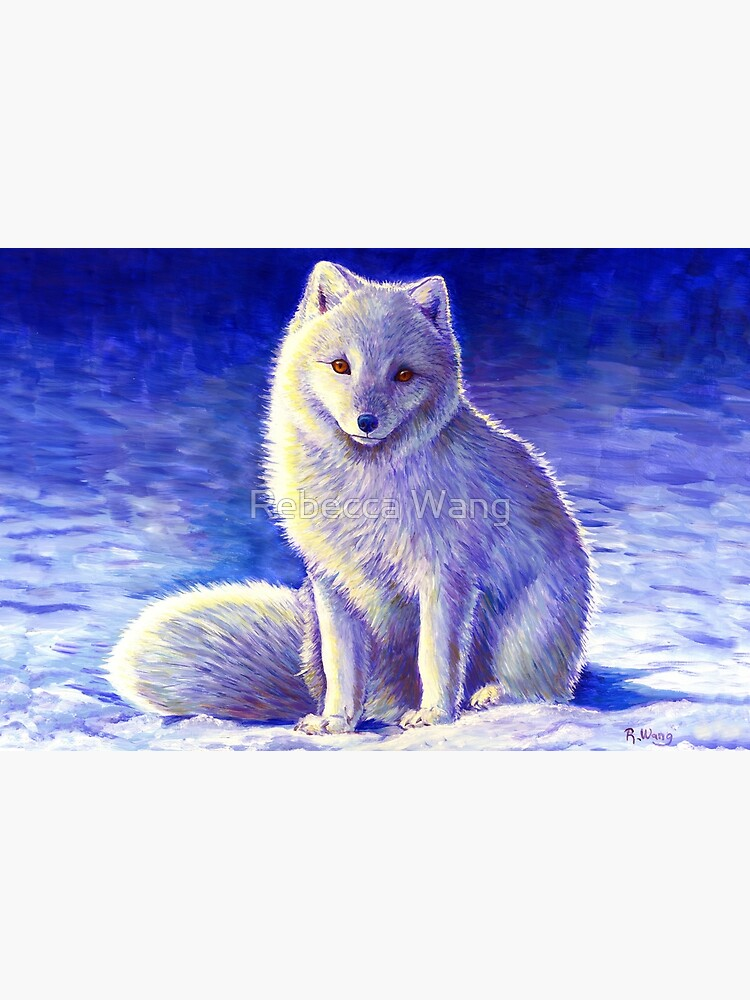 Peaceful Winter Arctic Fox by lioncrusher