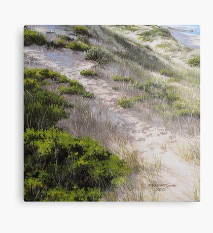 Powlett Beach Study Metal Print
