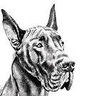 The Great Great Dane by Marcia Rubin