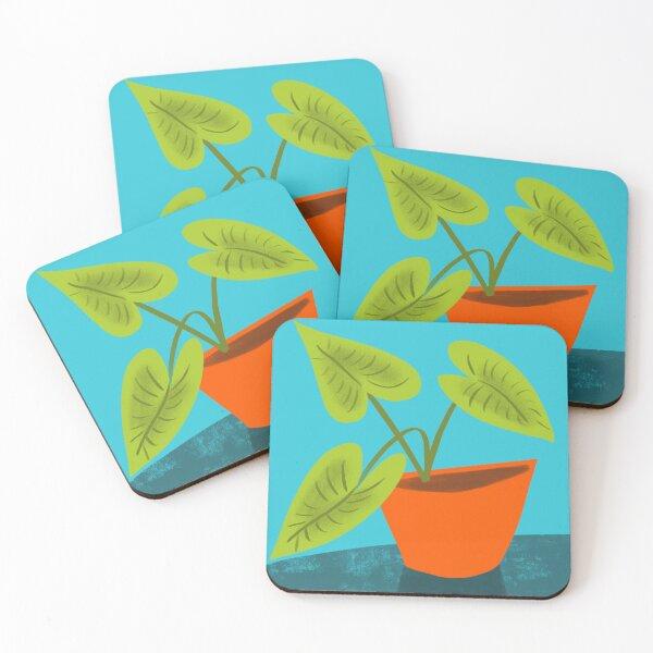 Seedlings on Aqua Coasters (Set of 4)