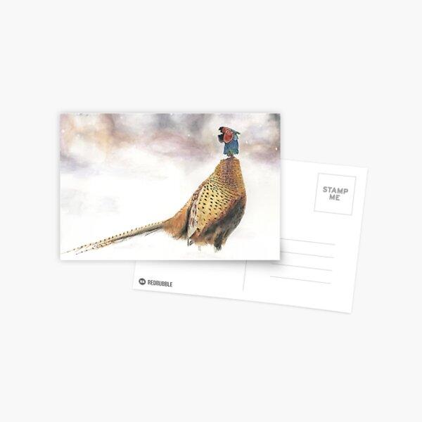 Pheasant in Snow Postcard