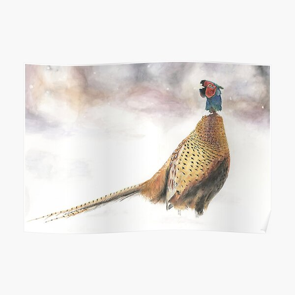 Pheasant in Snow Poster