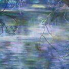 Yarra River Warrandyte by Pam Wilkie