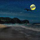 Omana Beach New Zealand by francesca47