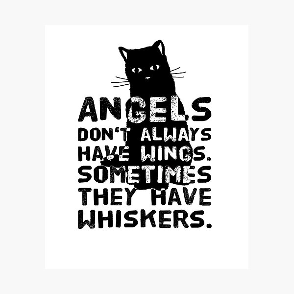 Cats are angels without wings with whiskers Photographic Print