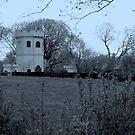 tinted castle by deegarra