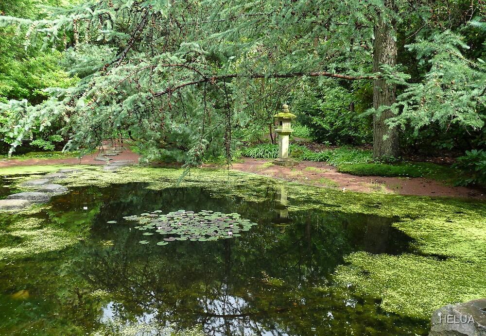 The Japanese Garden by HELUA