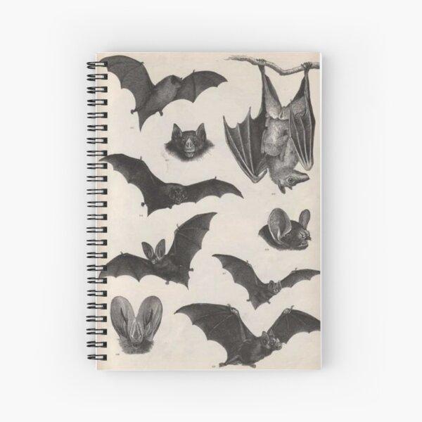 ilustraciones de murciélago victoriano vintage Cuaderno de espiral