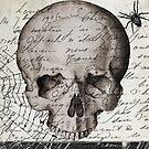 Vintage Paris Skull by mindydidit