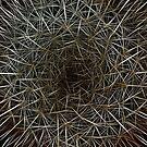 Dream Of Prickly Wild Fractal Wonderland by Atılım GÜLŞEN